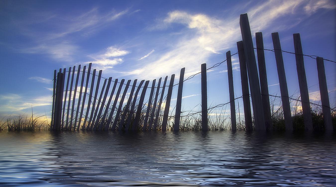 Fence 1 LP flood.jpg