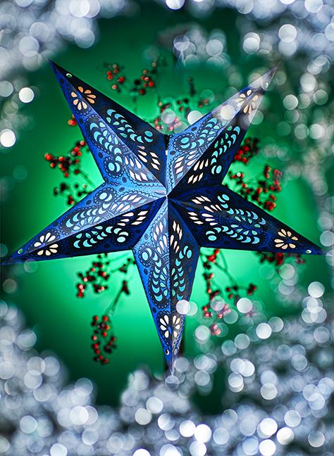x mas star still life  web.jpg