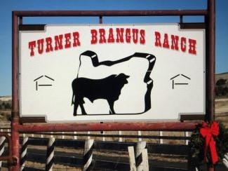 KT - Ranch Logo Ranch Brand 357 x 244 4-3.jpg