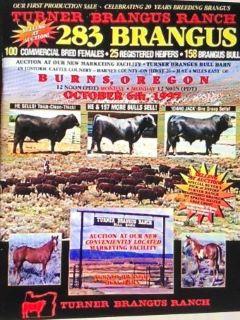 KT - Turner Brangus Ranch sale catalogue 240 x   .jpg