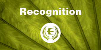 Recognition_icon.jpg