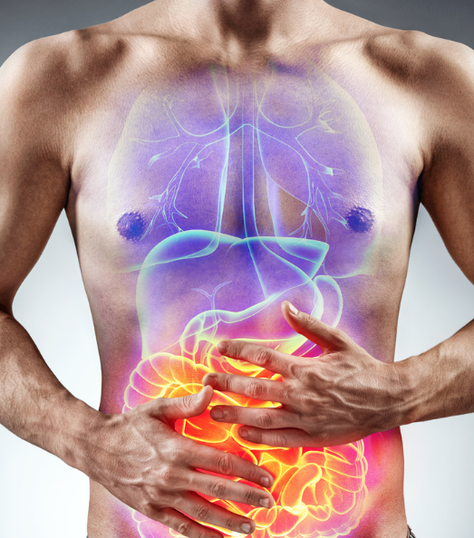 - The immune system is not one specific organ in the body. It is a complicated network of different organs, cells, and chemical secretions that all work in synergy to protect your body against foreign invaders and diseases. When the immune system is weak, the human body is susceptible to many illnesses, such as infectious diseases as well as cancer. If the immune system makes a wrong judgment or is confused, the body may develop allergies, such as skin allergies, or autoimmune diseases, such as rheumatoid arthritis. Many diseases are linked to a malfunctioning immune system.