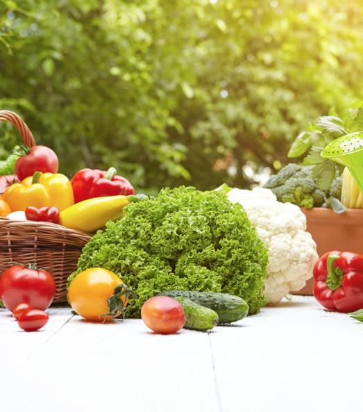 - 然而,目前依然沒有任何藥物或物質能替代免疫系統。免疫系統只能靠營養來滋養,給予恰當的營養,才能確保它的正常運作。每種蔬菜水果都具有其獨特的品質,並且蘊含不同的植物營養素、抗氧化劑和多醣體。要享盡蔬果的各類助益,就應該吃多種多樣的蔬菜水果。科學家們發現,食用各種各類、五顏六色的完整植物性食物,可以為免疫系統提供所需的最佳營養。幸運的是,這些食物無須遠求、更不用花大錢,在菜市場裡就能找到——這就是蔬菜水果,大自然贈予我們的營養寶庫。