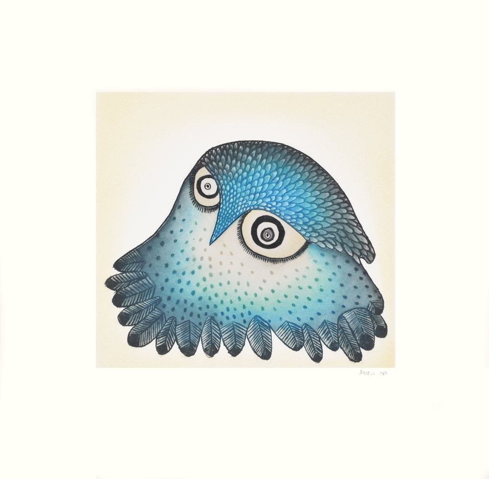 Ningiukulu Teevee, Innocent Owl