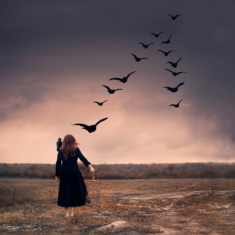 moore-kakaletris-flocking+freedom.jpg