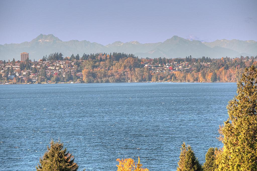 Lake Washington View.jpg