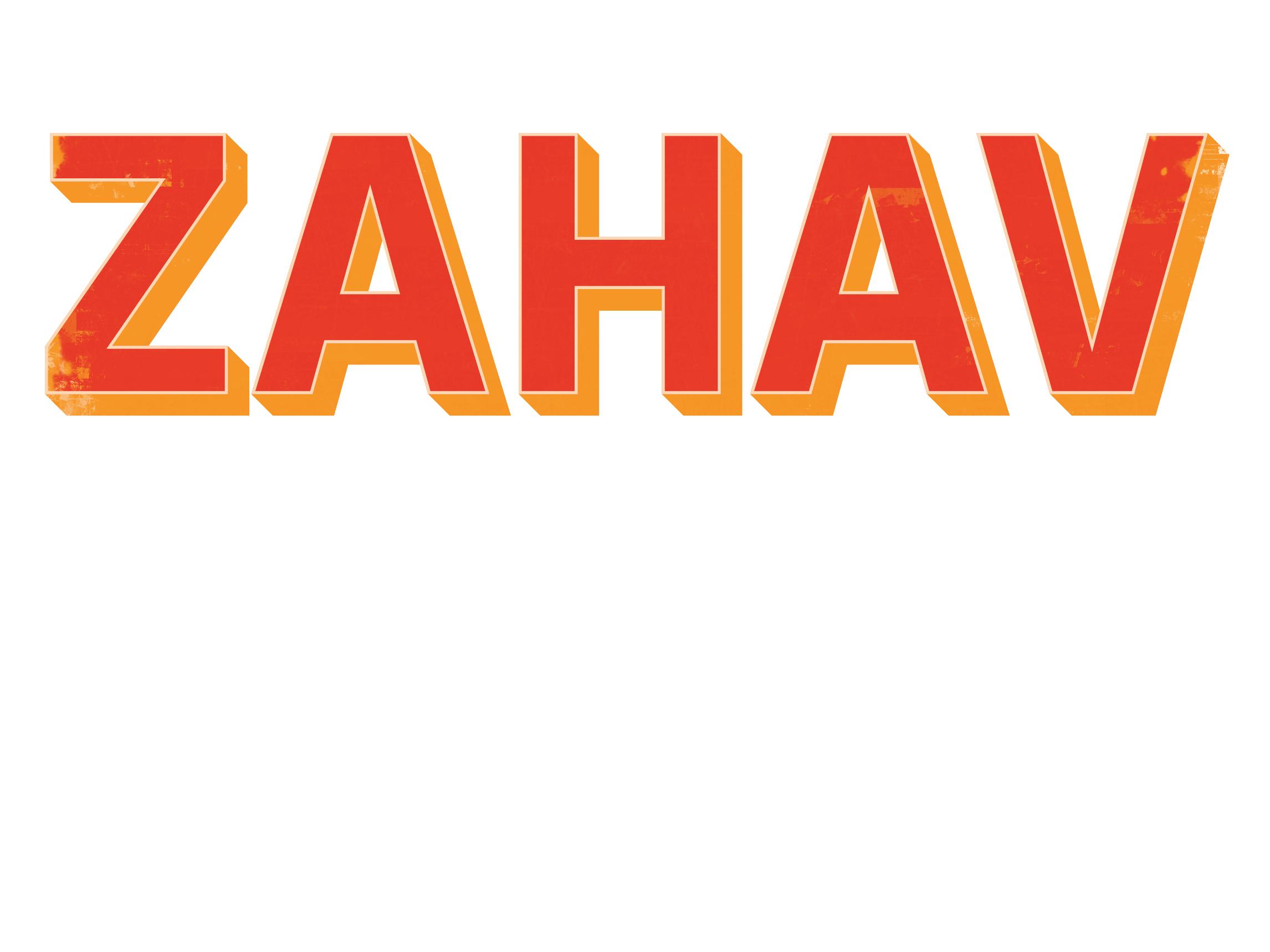 DMD_Logos_Zahav_150.jpg