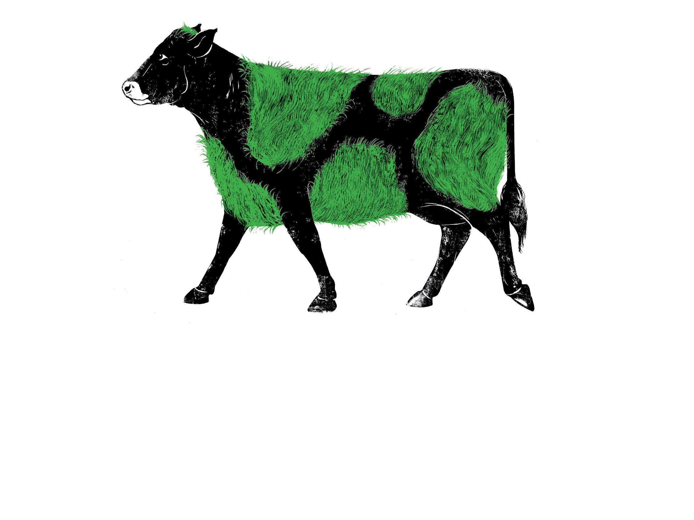 DMD_Logos_Grass Cow4_150.jpg