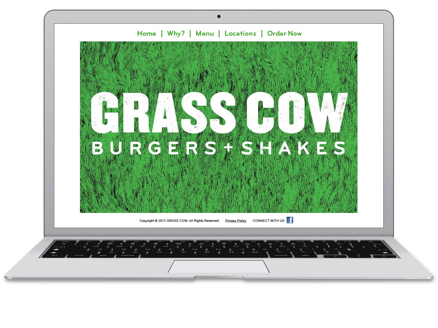 DMD_Web_Grass Cow 02_96.jpg
