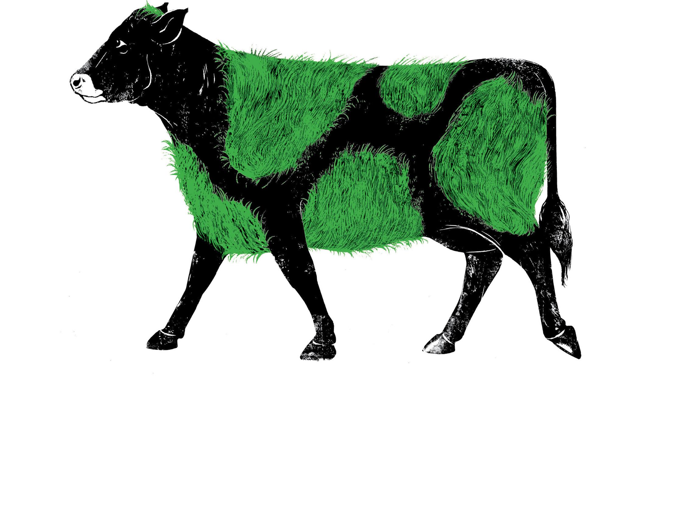 DMD_Logos_Grass Cow 03_150.jpg