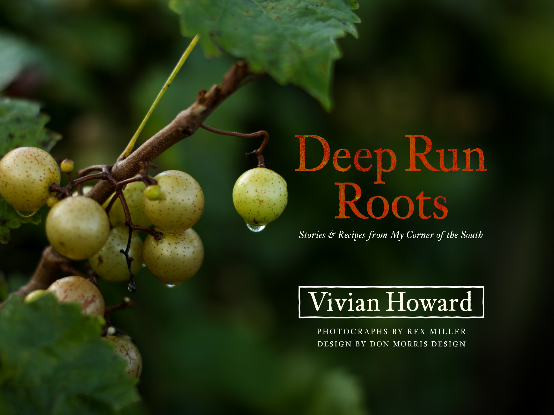 DMD_Deep Run Roots_150_4.jpg