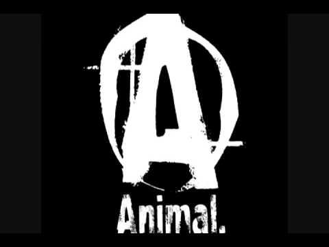 Animal Pak.jpg