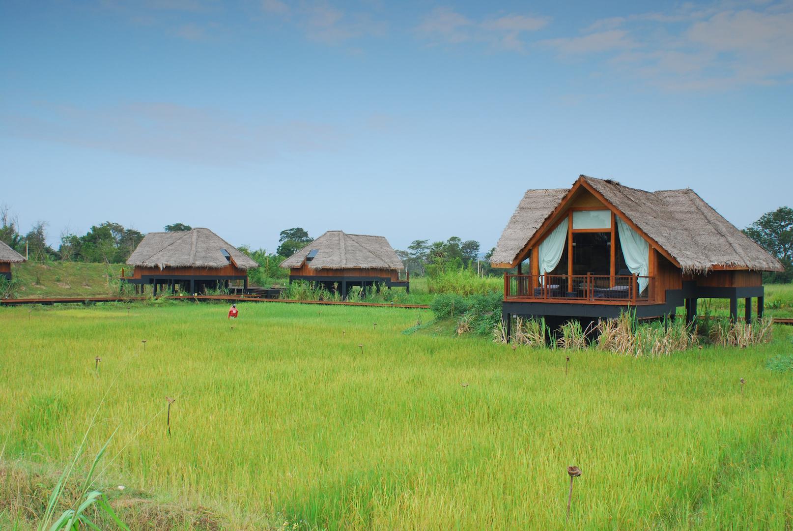 Dwellings Over Paddy.JPG