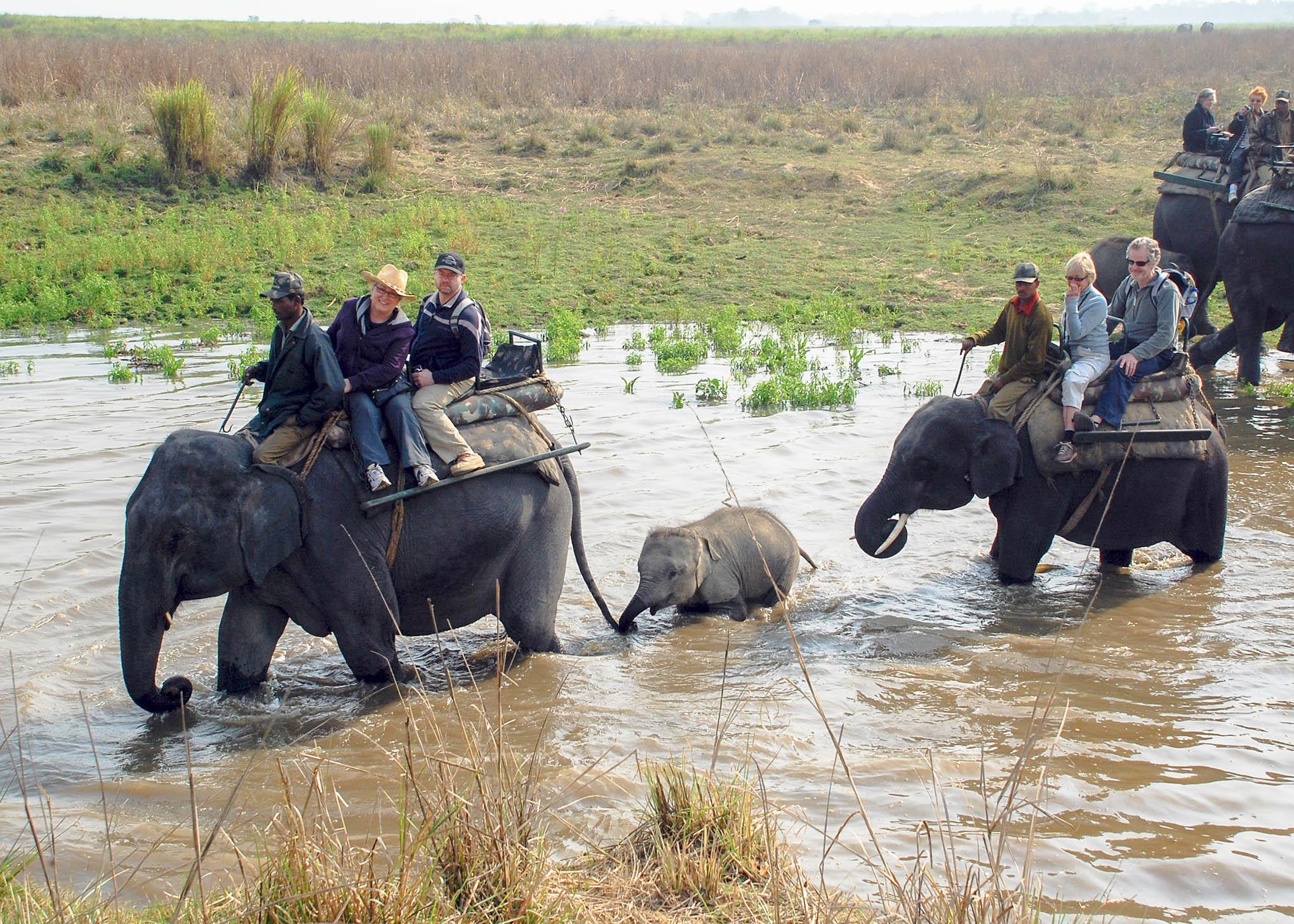 Elephant+Ride.jpg