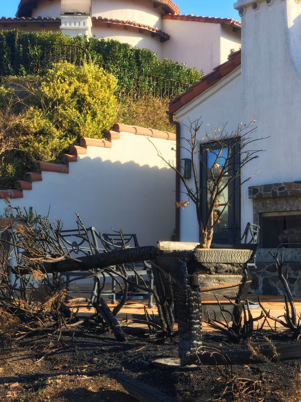 Damage from the Woolsey fire outside Interior Archaeology's design studio