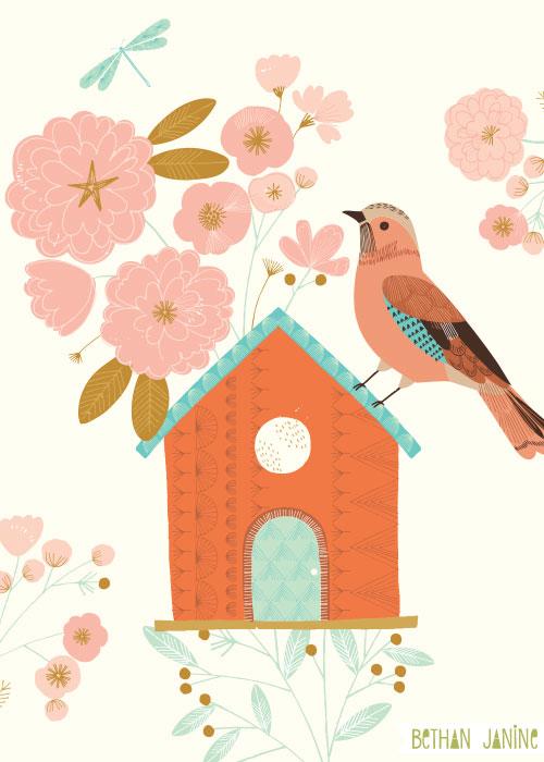 Bird house & Jay