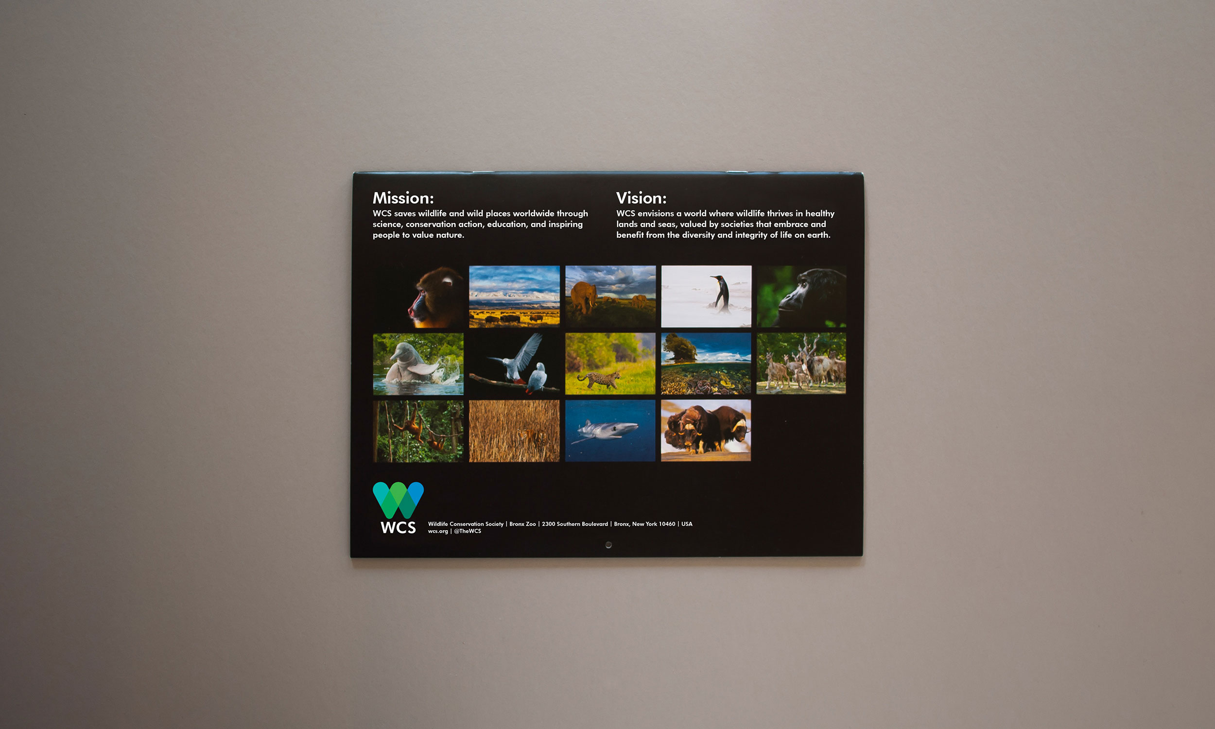 WCS-2017-Calendar_Web_Cover_Back.jpg