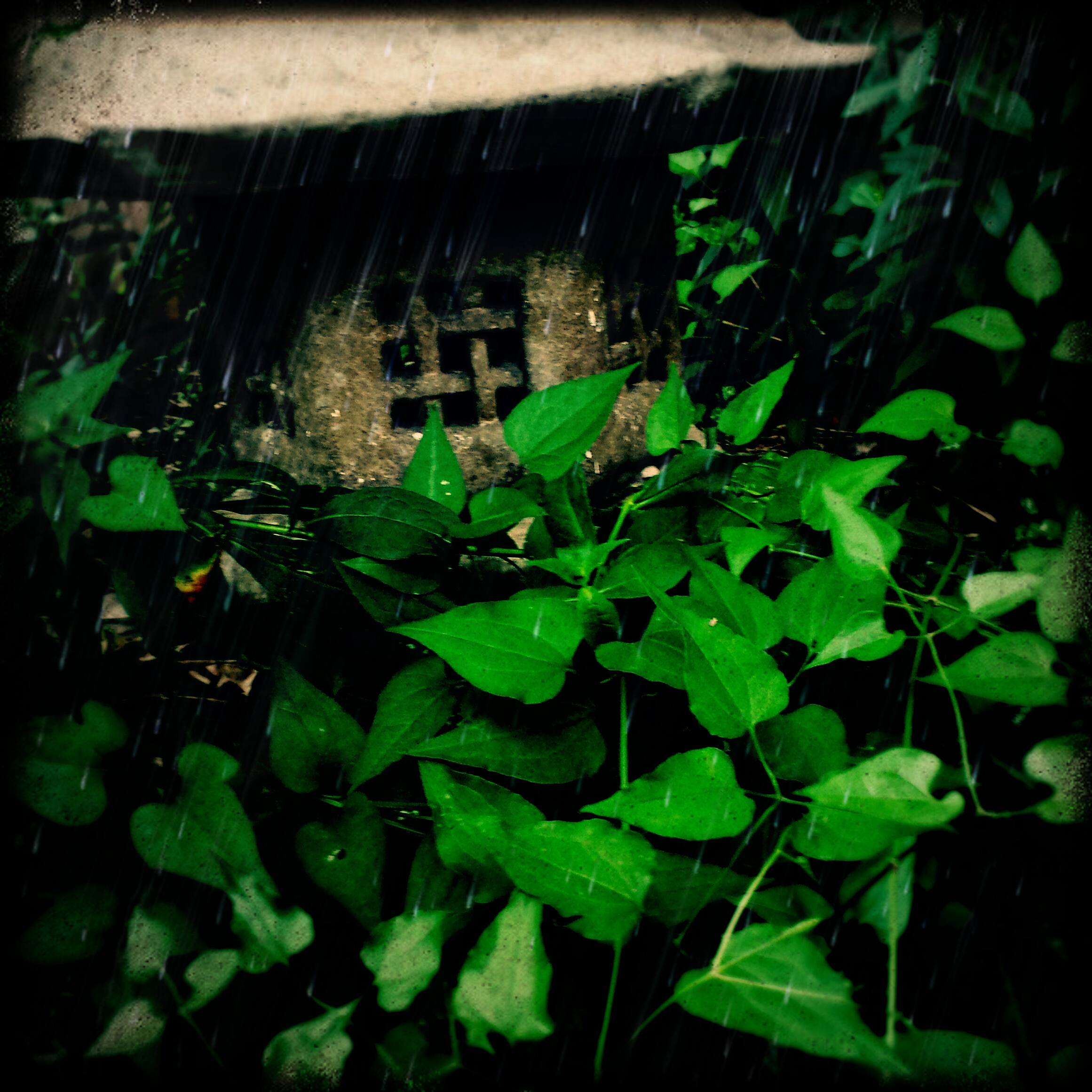 20130706_175035_Tony_Rain_Sand.jpg