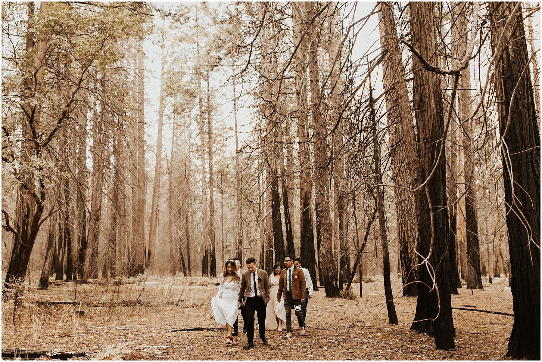 Yosemite_elopement_0036.jpg