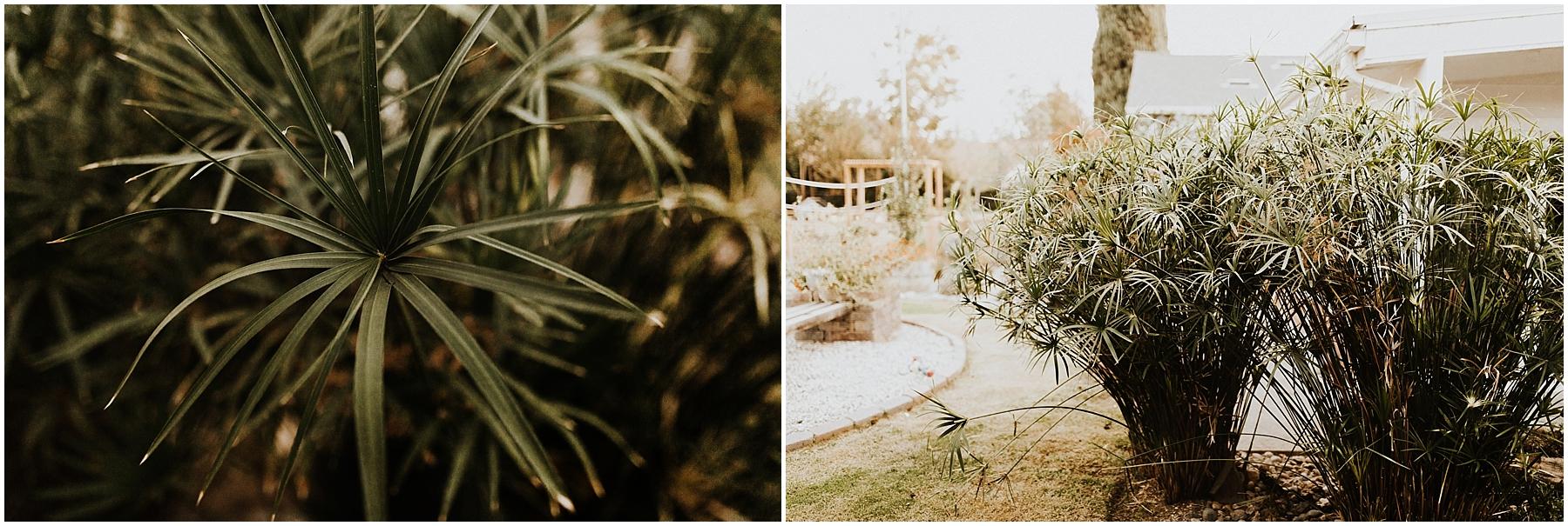 california_anniversary_0043.jpg