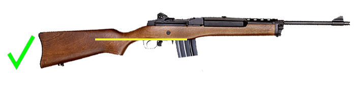 Ruger Mini-14 Configured as a California legal rifle with detachable magazine.