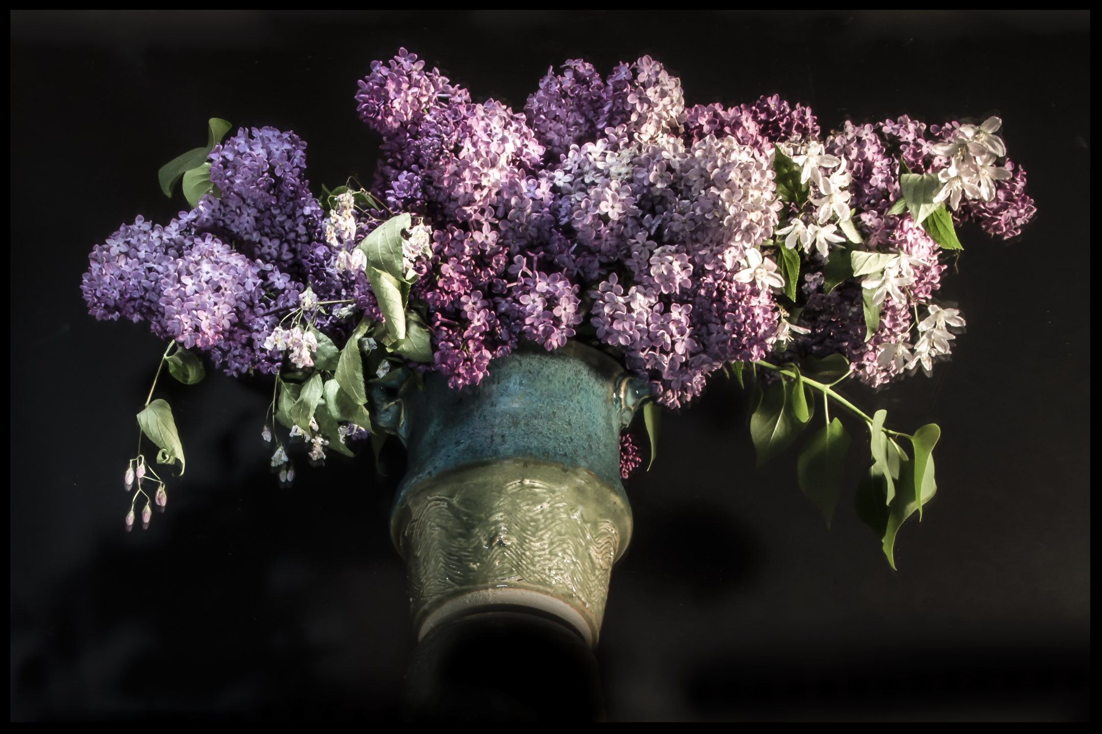 Lilacs/Series of 4