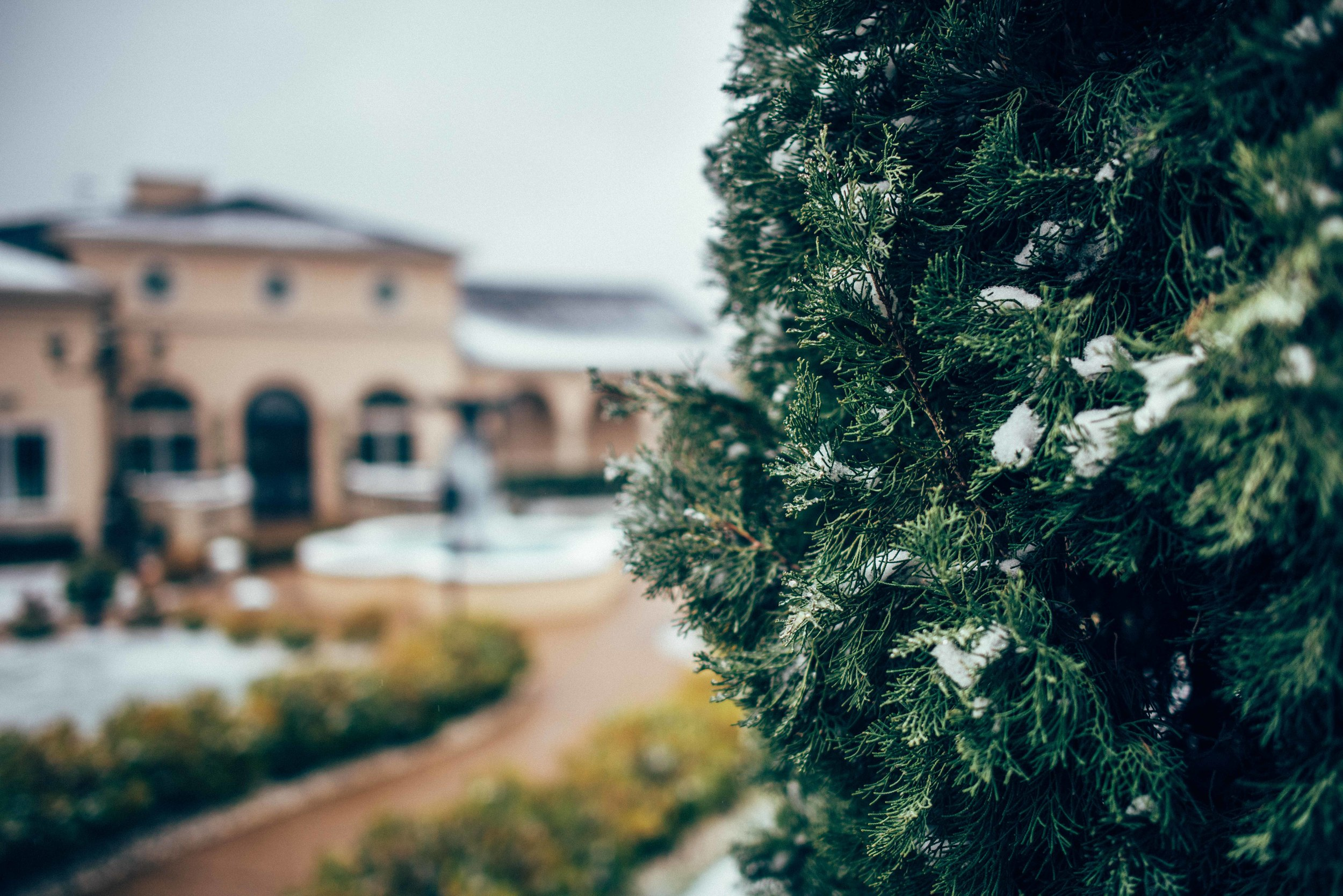 Mediterranean Villa was covered in a beautiful layer of snow and ice
