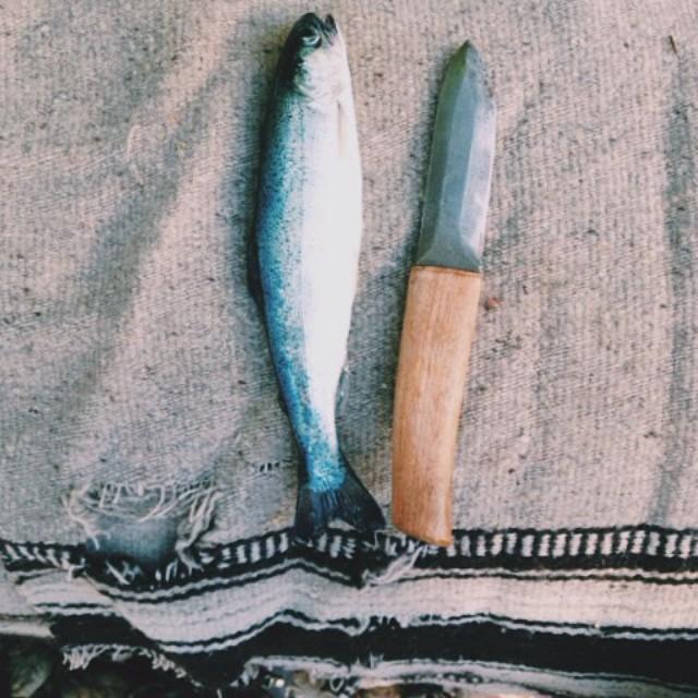 Life in the Kootenays. Knife in the Kootenays. #firstfish