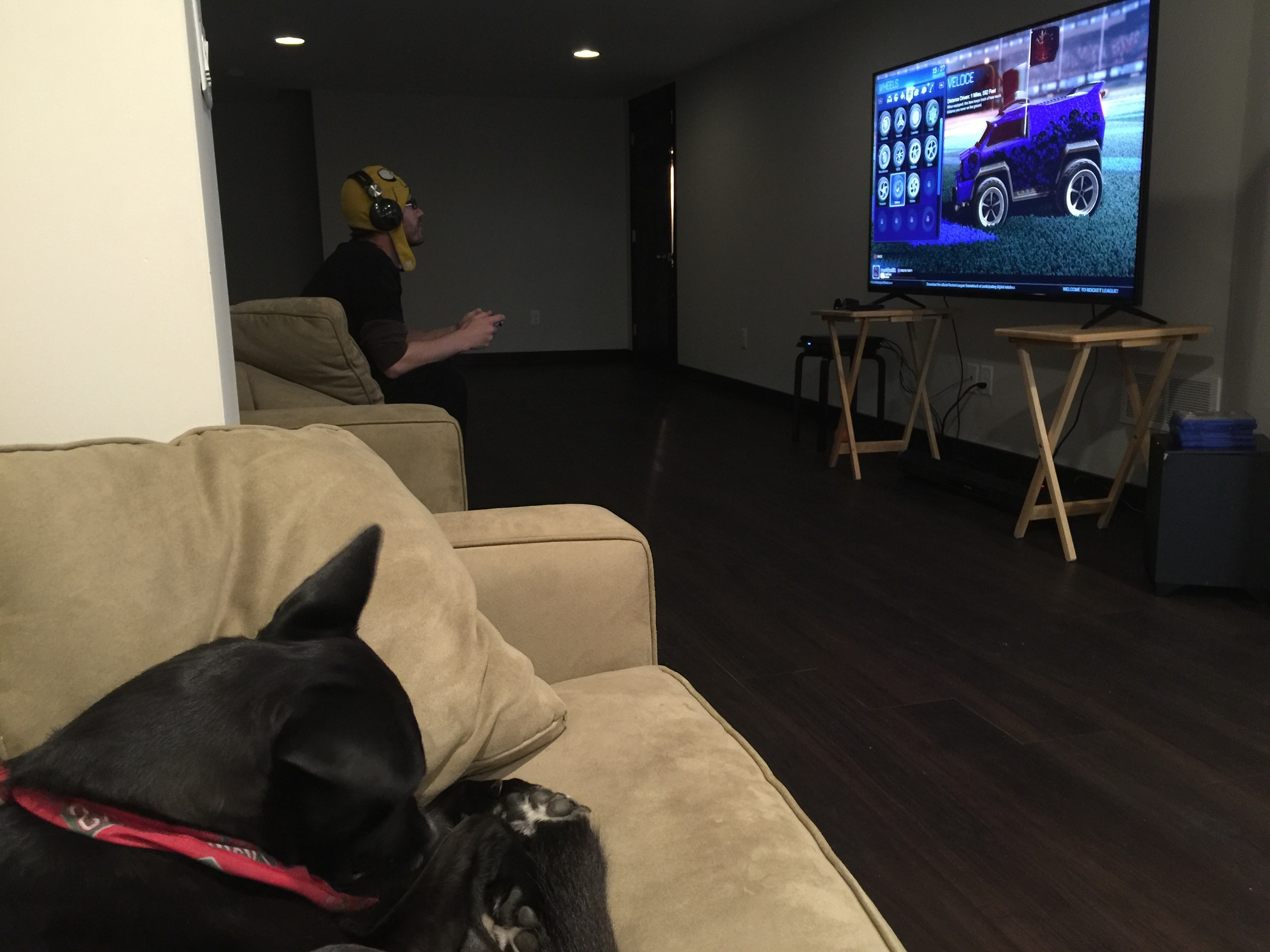 Joel's view from his couch during Extra Life 2015 (foot warmer & Sergio pictured)