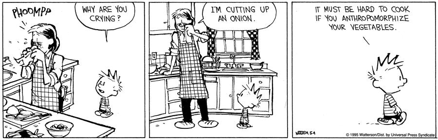 Calvin & Hobbes Empathy.png