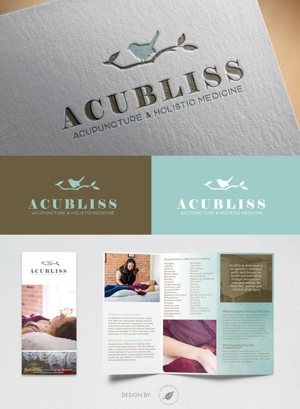 Logo Redesign & Trifold Brochure Design for Acupuncture Business Featuring Bird + Branch Design, Teal + Brown, and Watercolor Texture