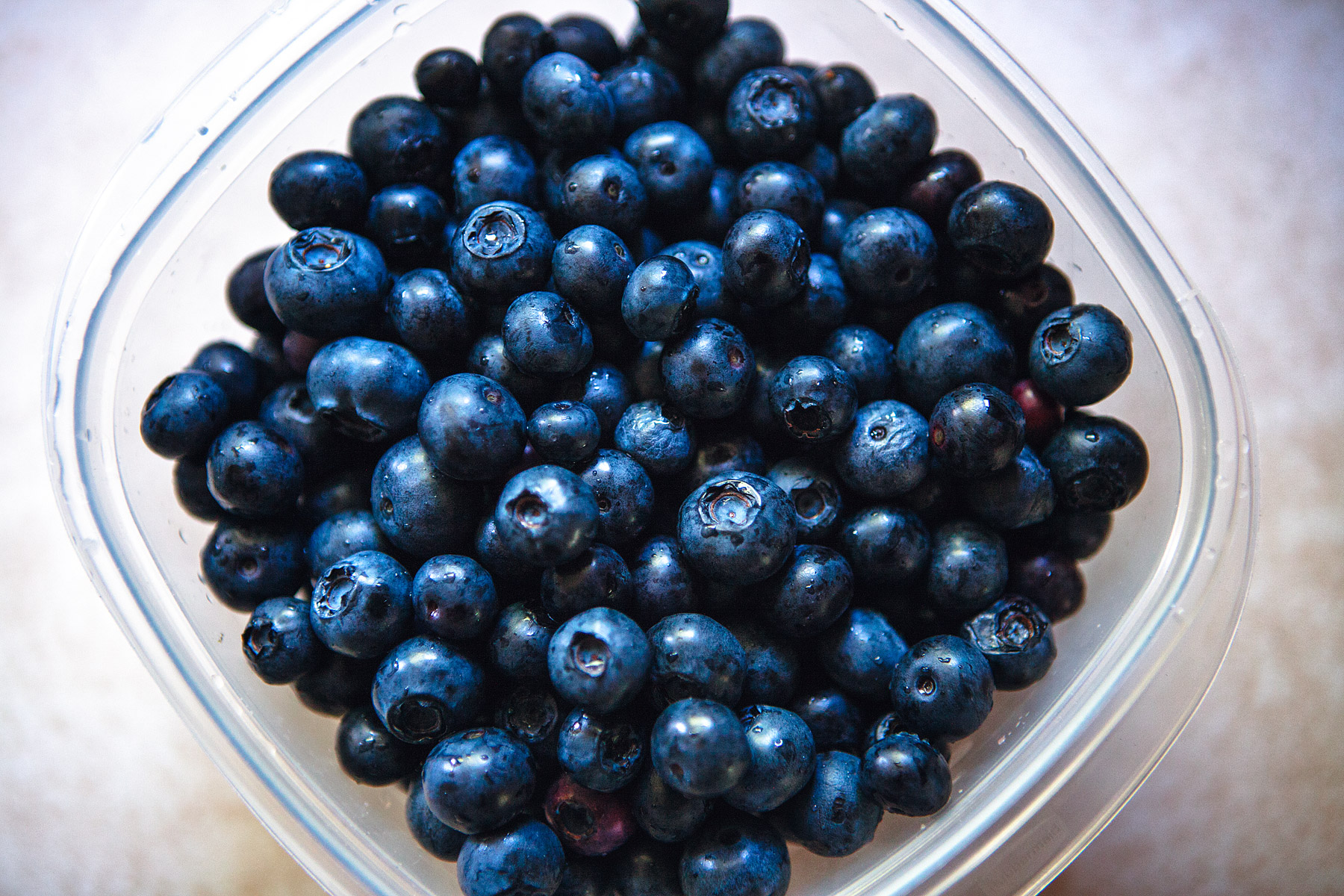 Fresh picked organic blueberries