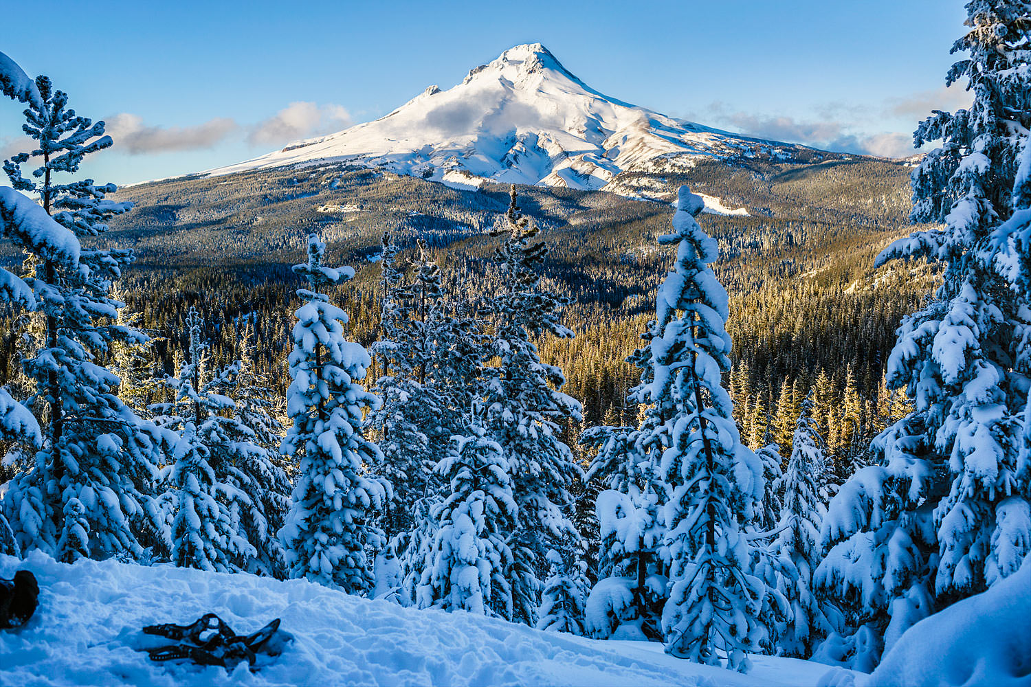 View of Mt Hood, Oregon from  a recent snow shoe trip