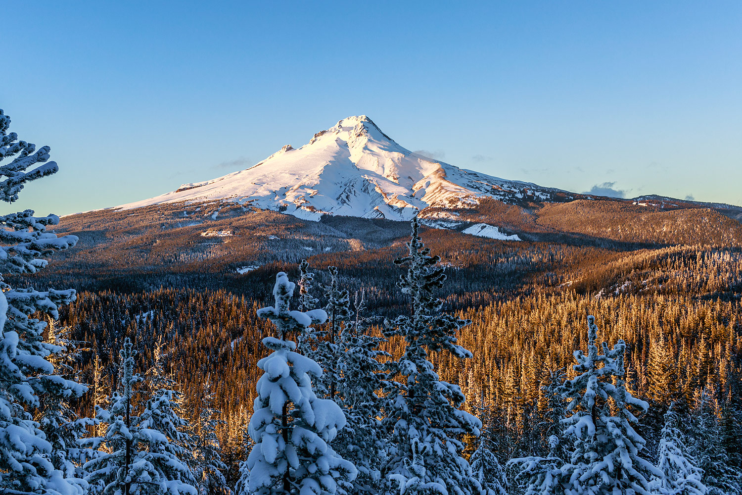Fresh snow on Mt Hood, Oregon