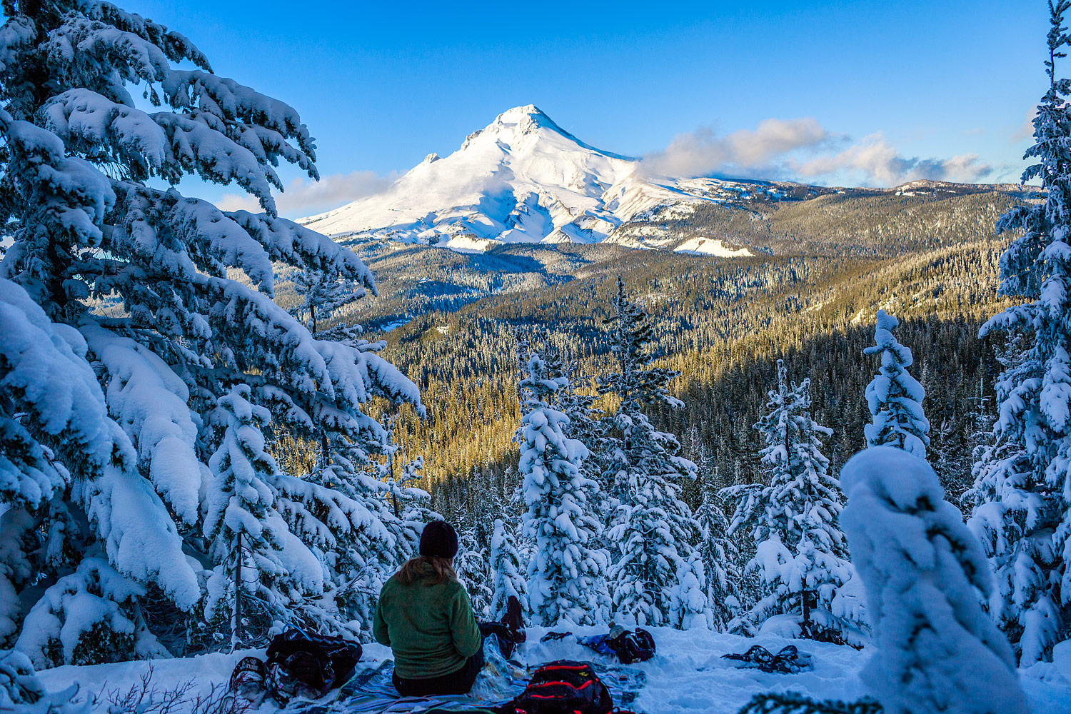 Picnic with a view of Mt Hood, Oregon