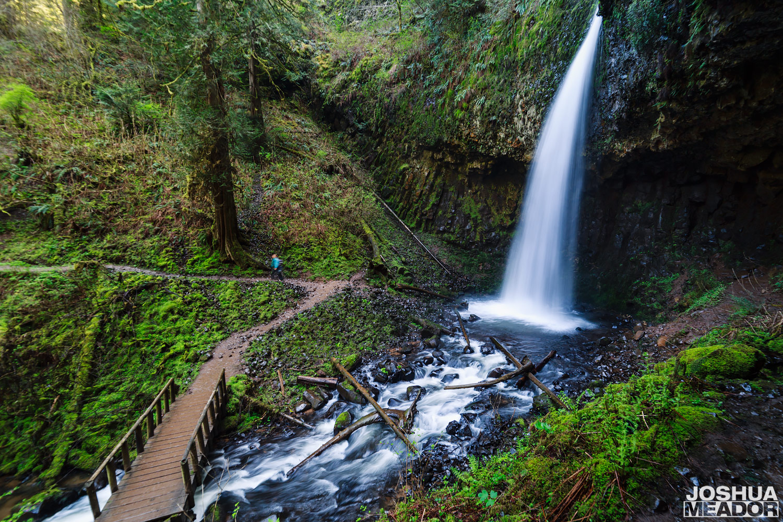 Bridge and trail next to Upper Latourell Falls, Oregon
