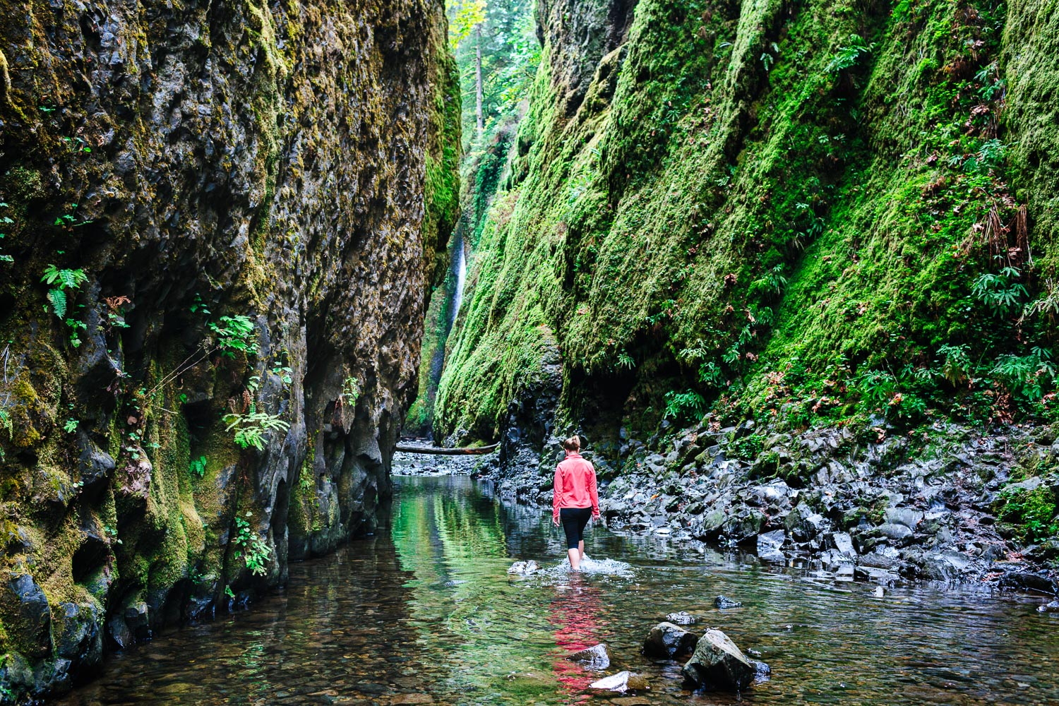 Hike up the river to Lower Oneonta Falls, Oregon