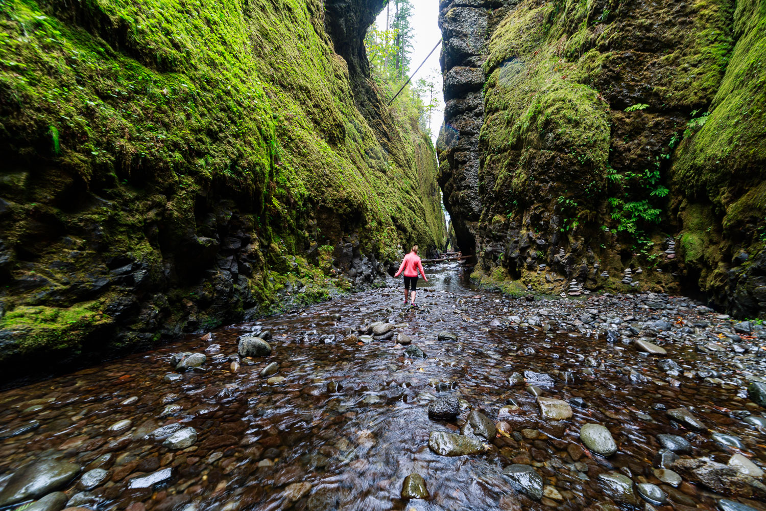 Hiking in the amazing Oneonta Gorge surrounded by 25 Million year old Basalt walls covered in moss.