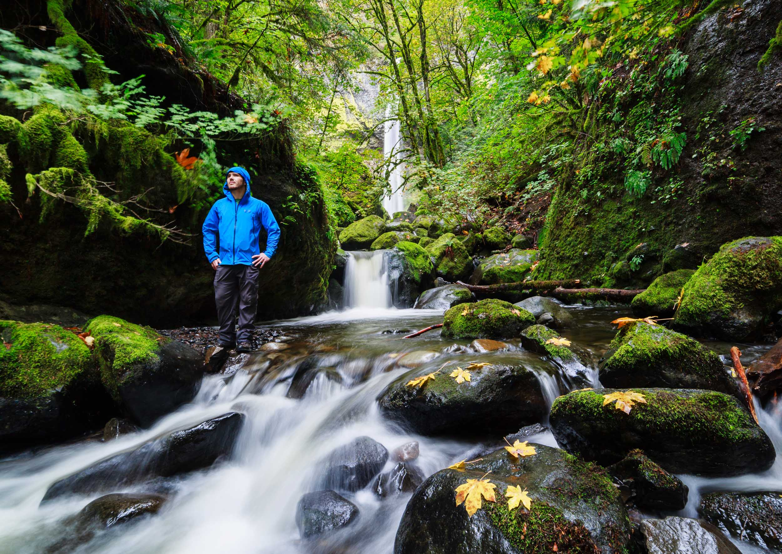 Hiker down stream in the mossy forest below the beautiful Elowah Falls, OR