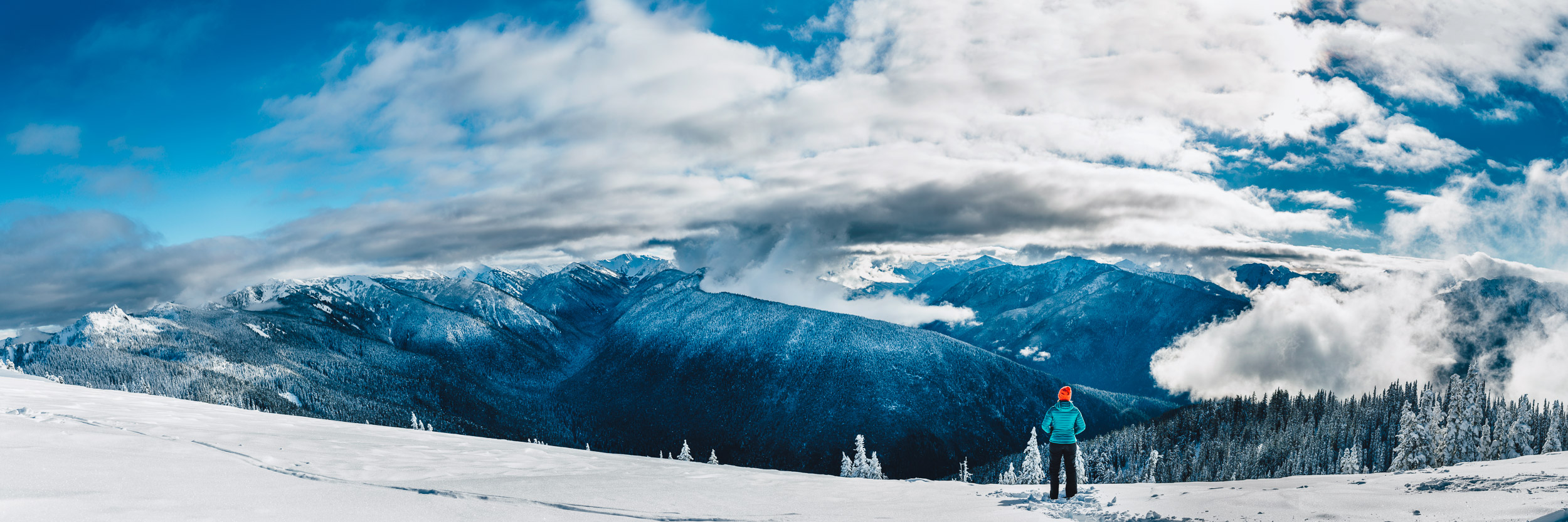 Beautiful winter wonderland from atop Hurricane Ridge overlooking Olympic National Park, Washington