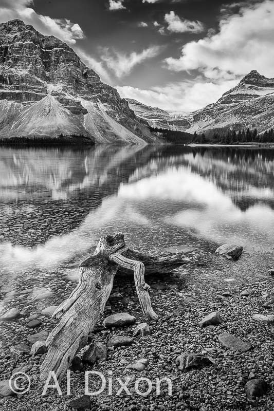 Bow Lake B&W