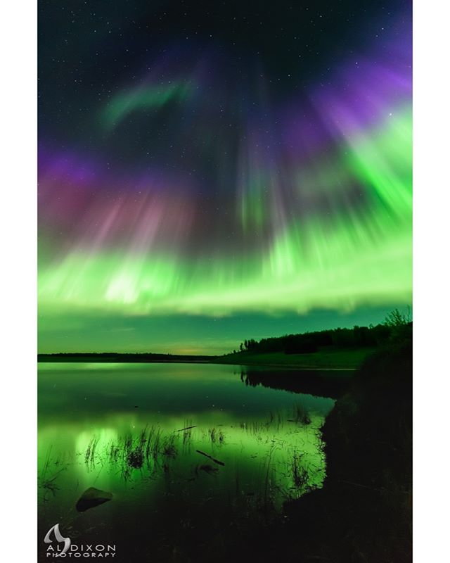 Northern Lights dancing over Paddle River Reservoir in Lac Ste Anne County. #photography #aurora #auroraborealis #northernlights #art #sky #explorealberta #travelalberta #landscape #landscape_captures #Alberta #Nikon #D810 #reallyrightstuff #myrrs