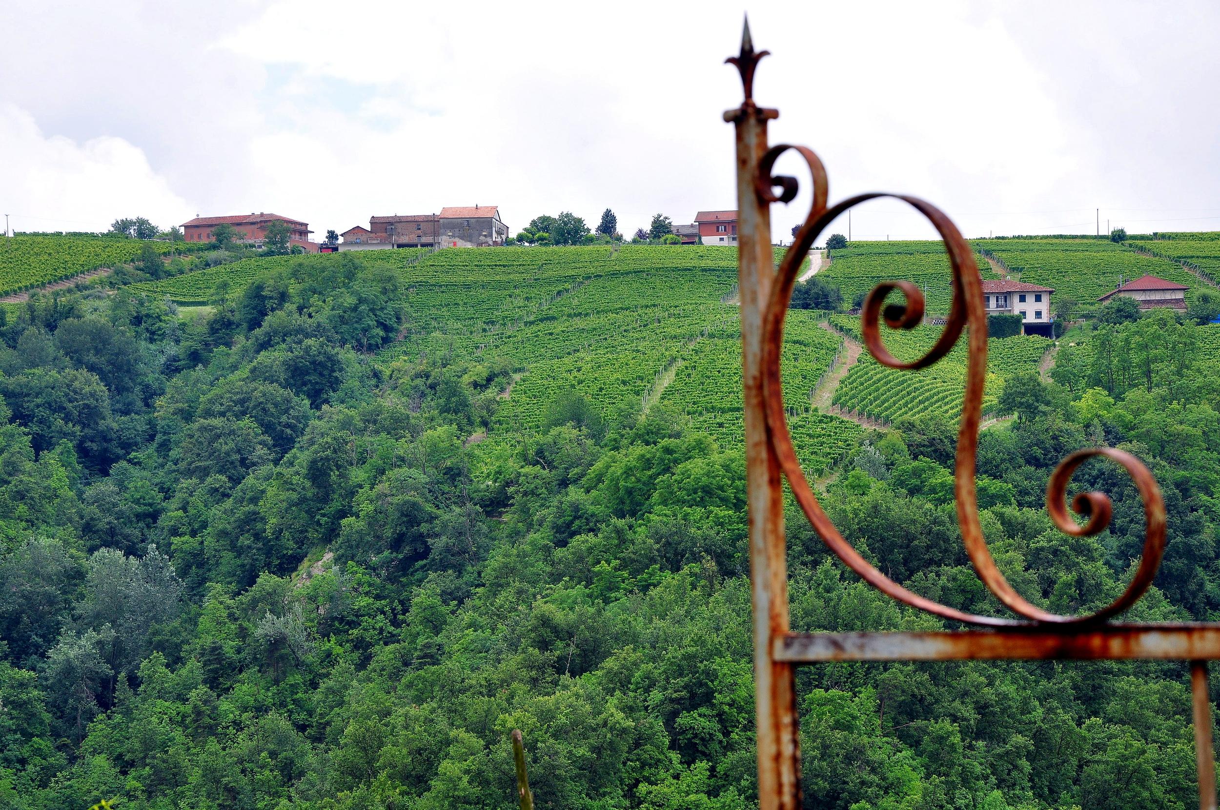 Around Castiglione Tinella
