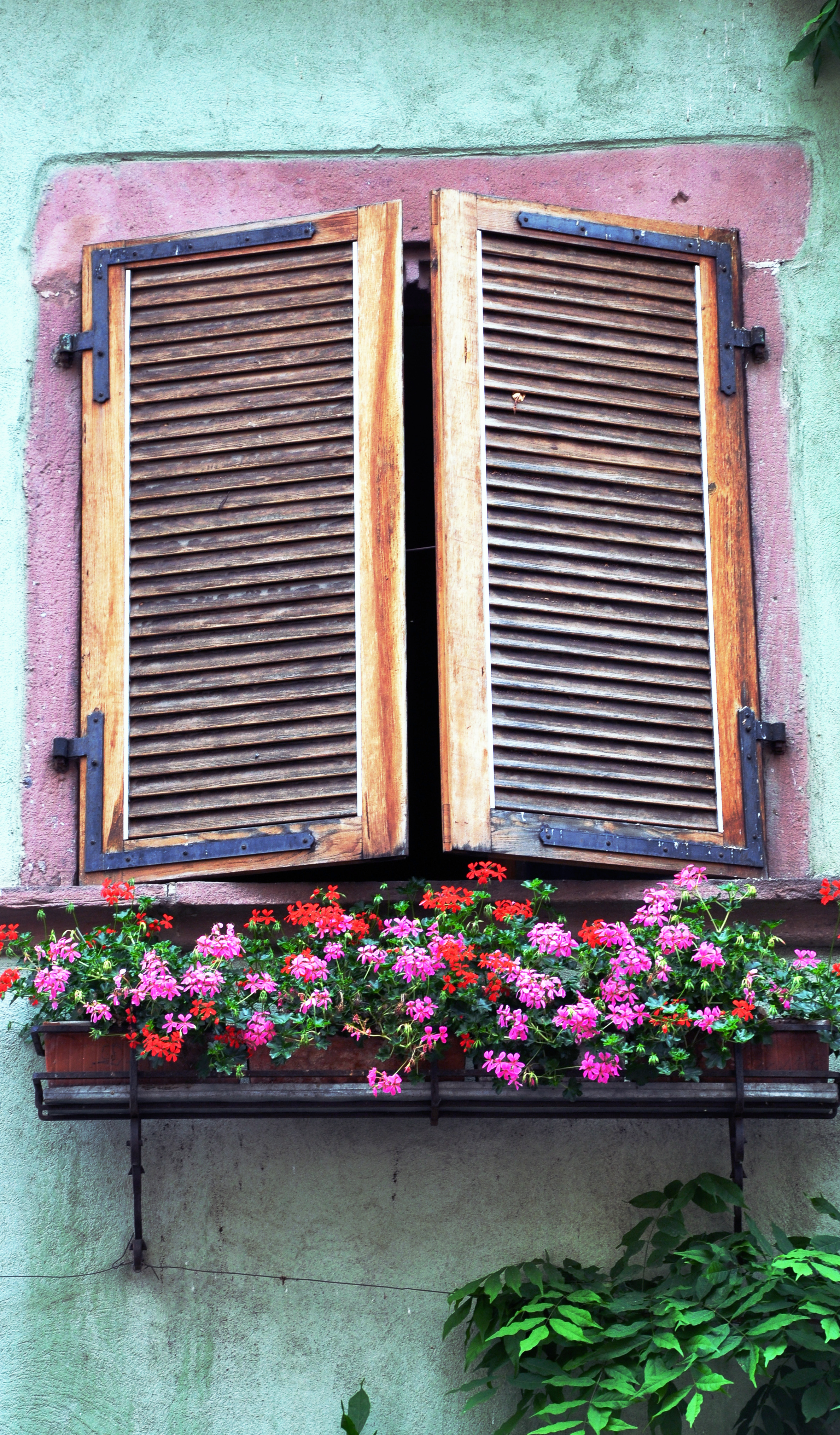 Riquewihr Window  ©Copyright 2015 Bridget Barnes