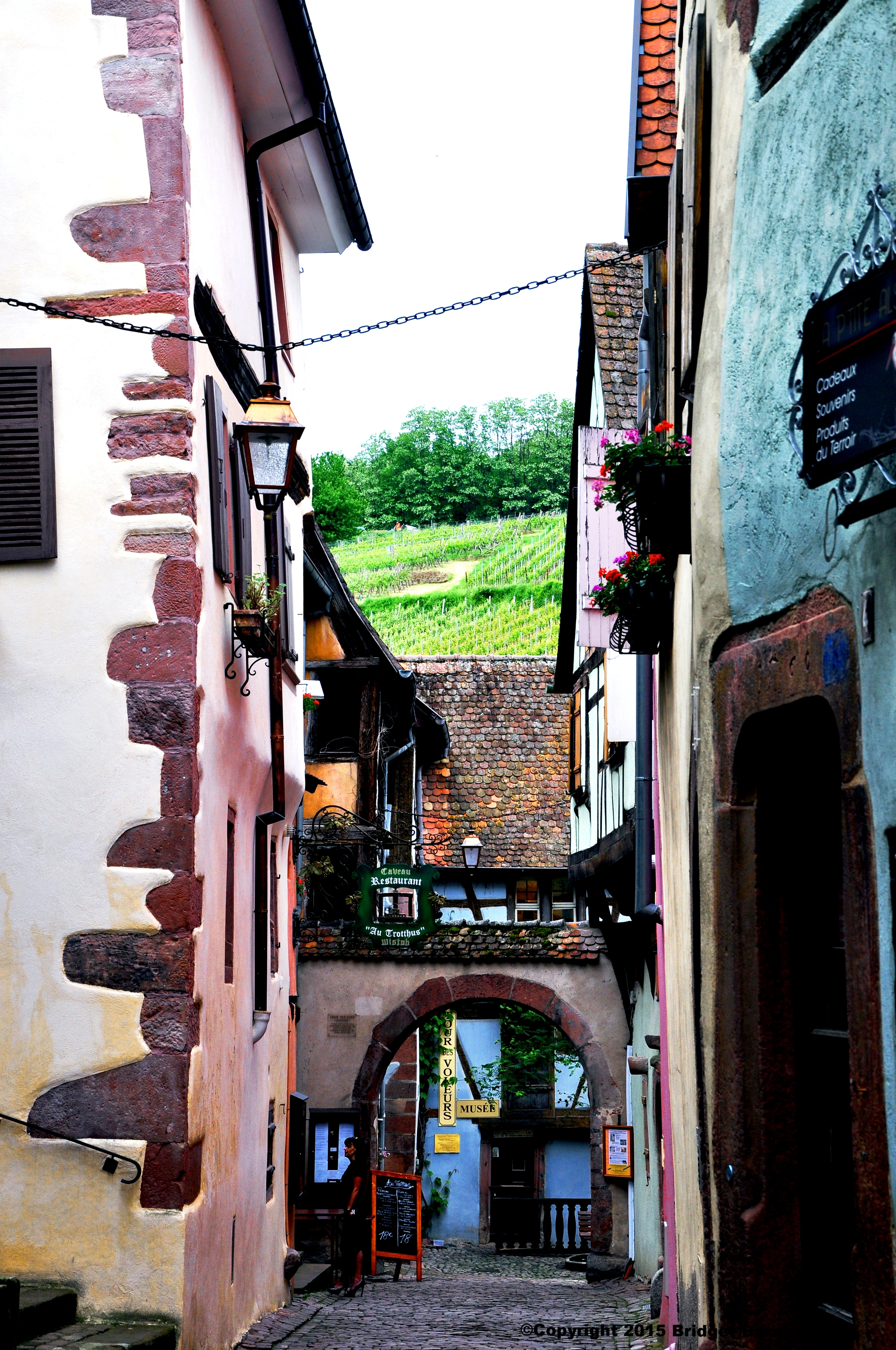 Riquewihr, France  ©Copyright 2015 Bridget Barnes