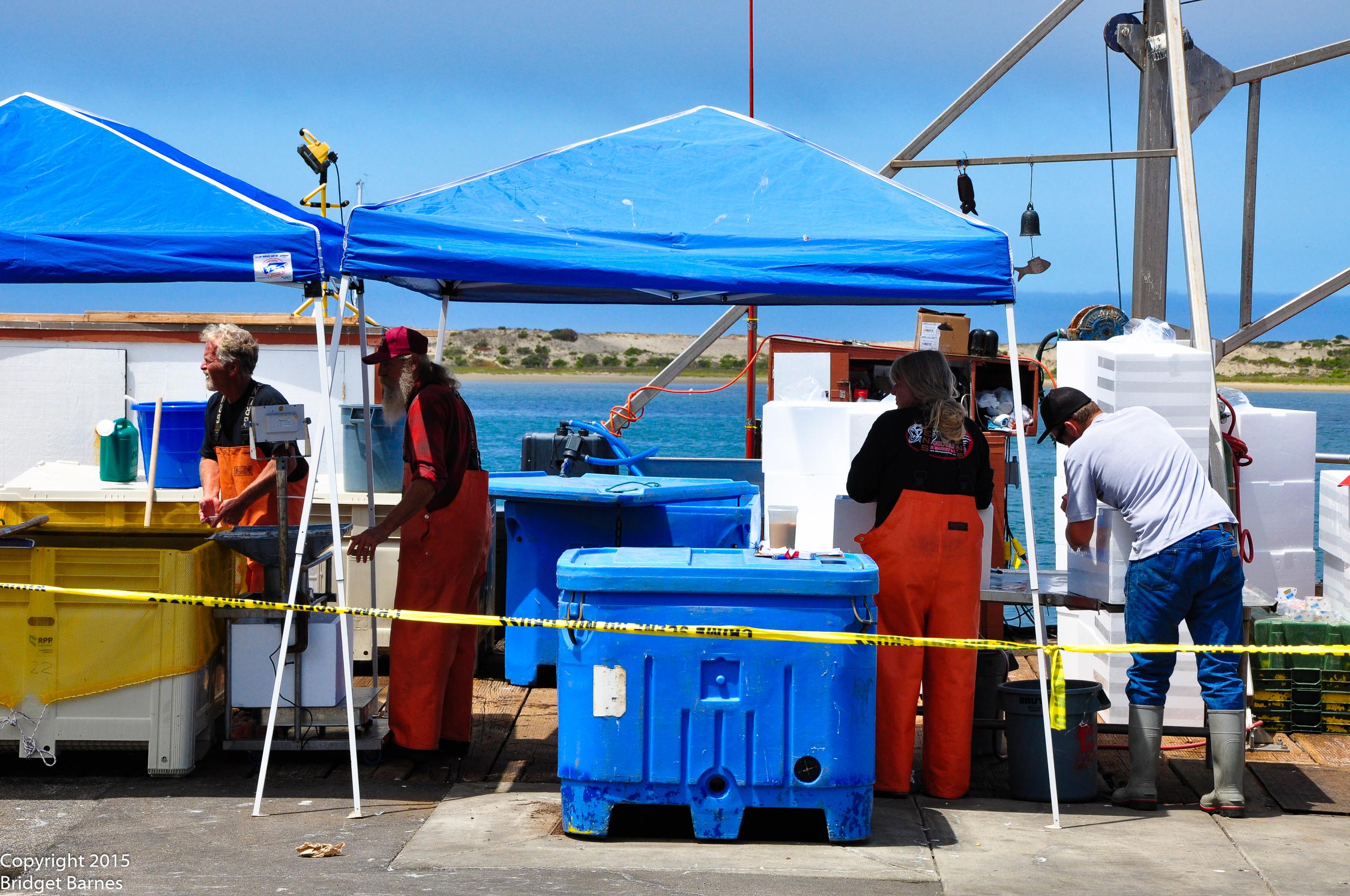 Morro Bay Fishermen