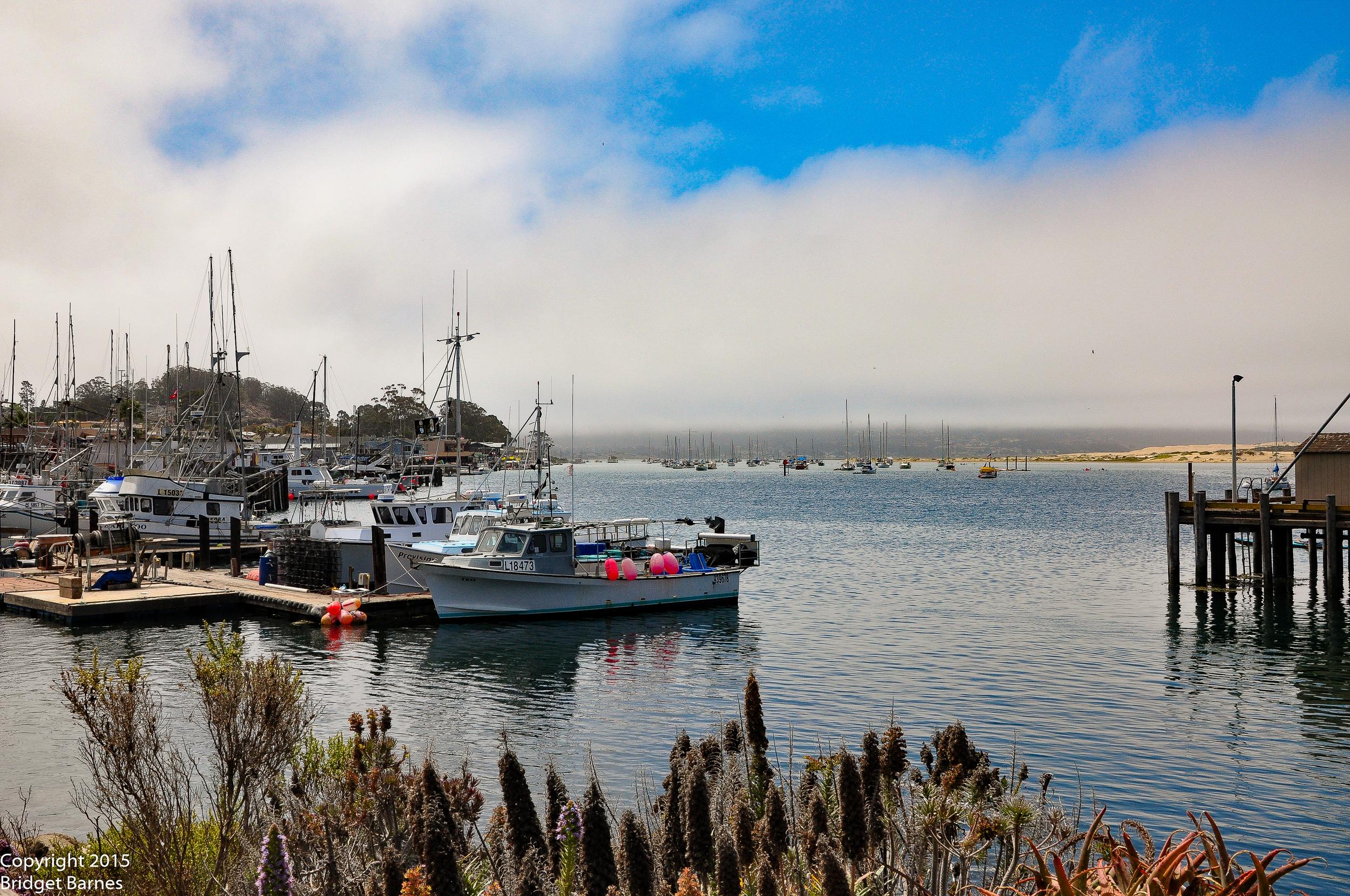 Boats in Morro Bay, California