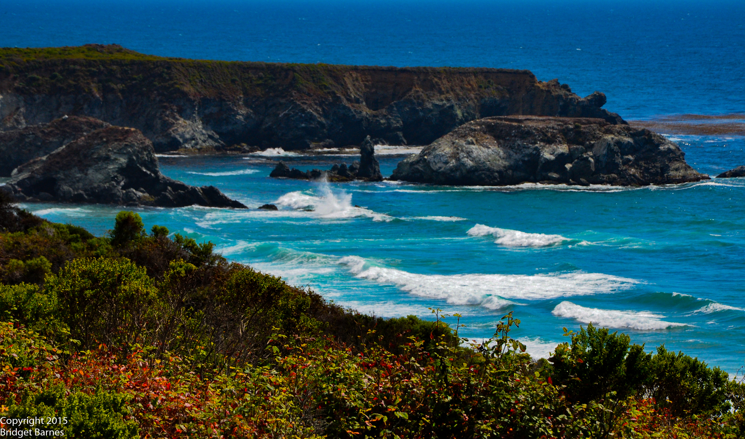 A view from the Pacific Coast Highway on the way to Monterey  ©Copyright 2015 Bridget Barnes