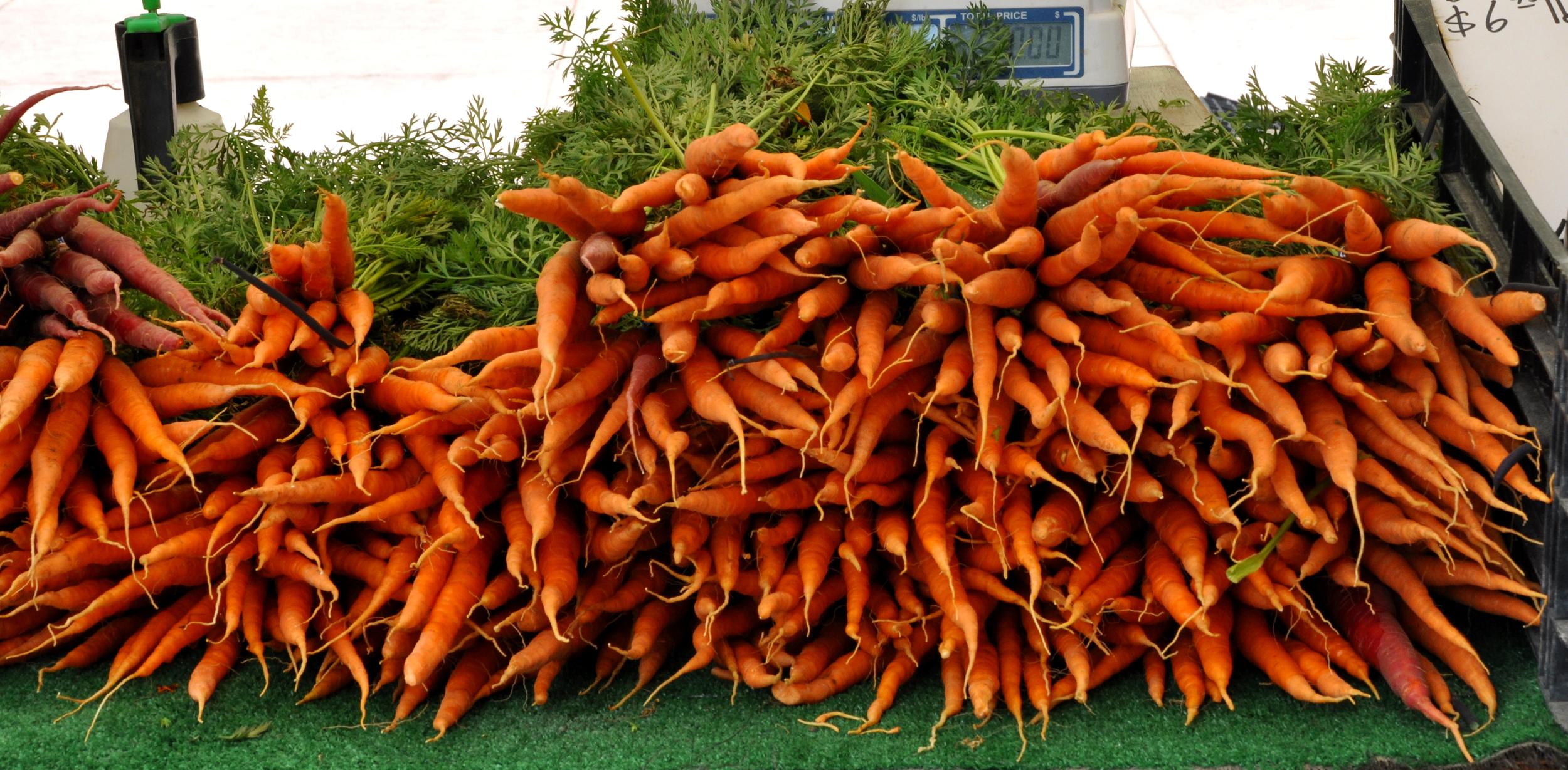Carrots at the Hollywood Farmers Market  ©Copyright 2015 Bridget Barnes