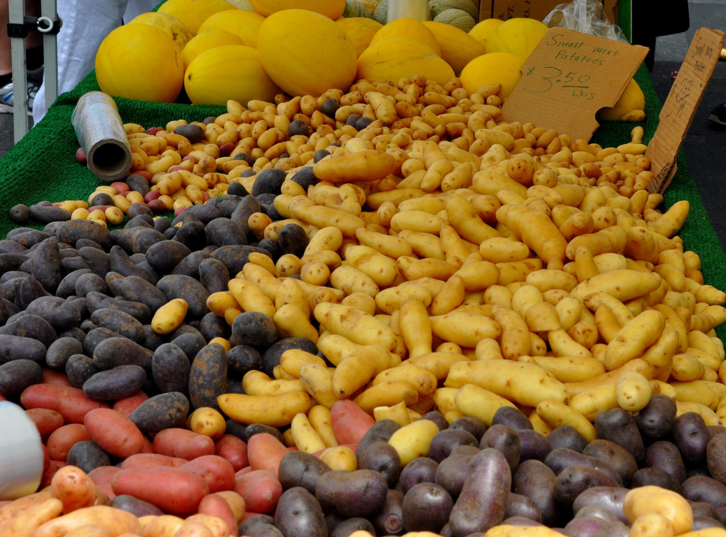 Potatoes at the Hollywood Farmers Market  ©Copyright 2015 Bridget Barnes